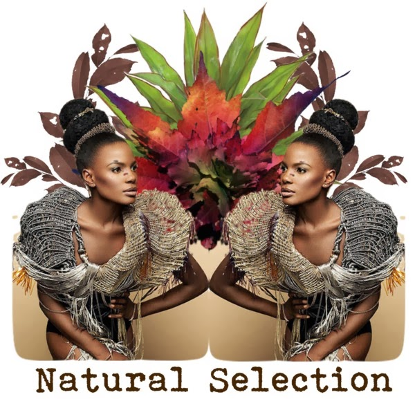 http://emblemofbeauty.blogspot.co.uk/2014/01/natural-selection_1998.html