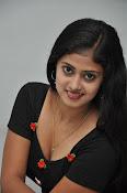Megha sri photos at Kaki event-thumbnail-9