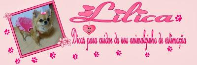 http://cuidadosparapet.blogspot.com.br/