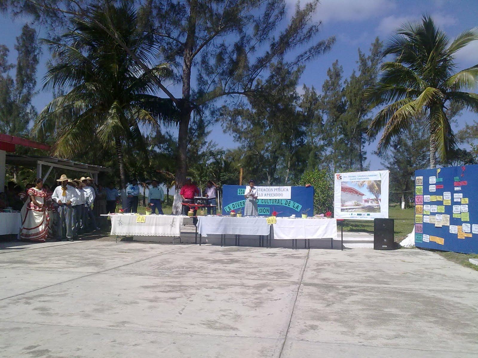 TELESECUNDARIAS ZONA 12 POZA RICA SUR: marzo 2011