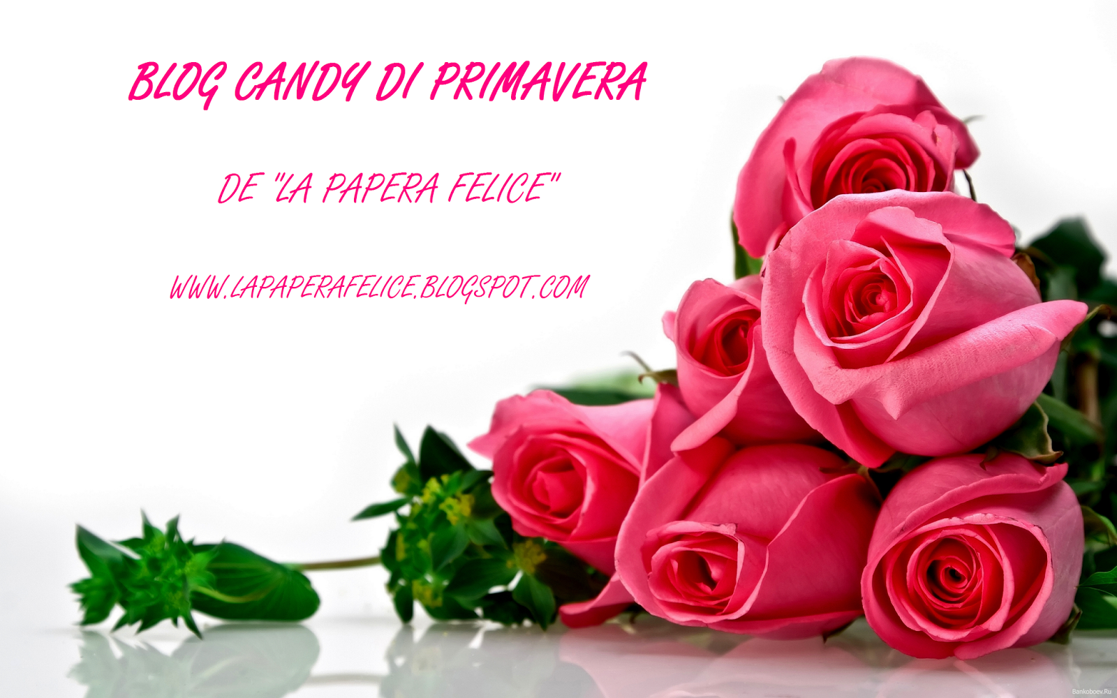 blog candy di primavera
