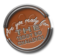 proud to design for the teddy bo challenge