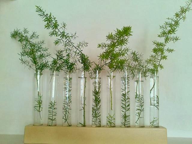 Plantas flores y velas para decorar para disfrutar - Decorar jarrones con velas ...