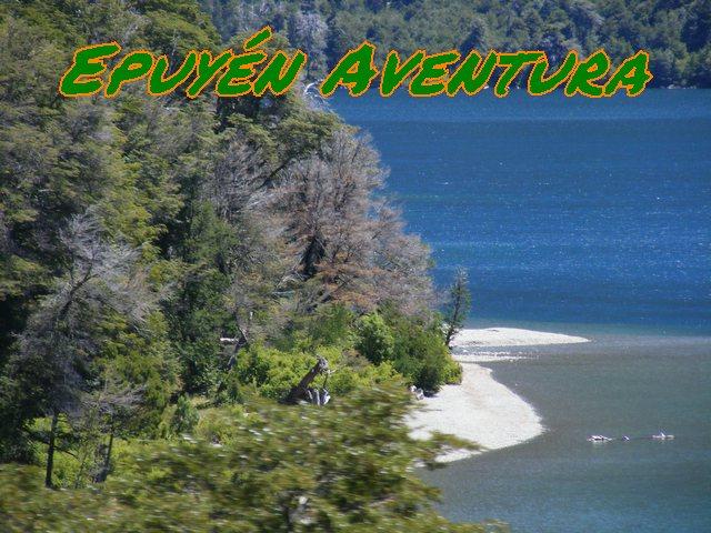 Costa patagónica de lago - Patagonia Andina