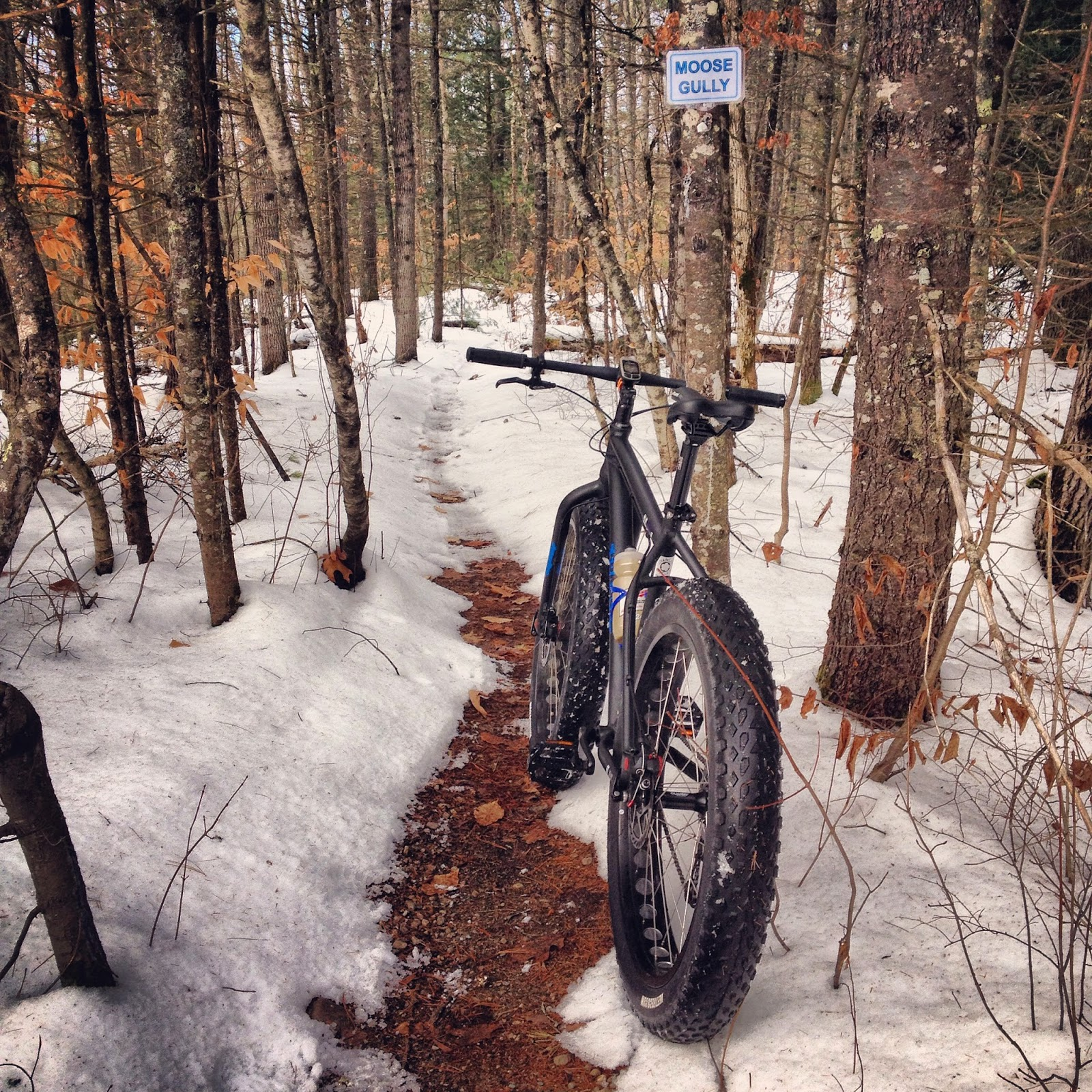 Manarea: Framed Minnesota 1.0 (YAY FAT BIKES!)