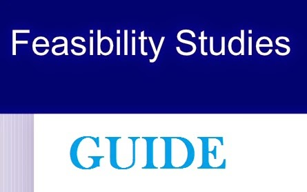 How To Prepare A Good Feasibility Report With Examples In Format ...