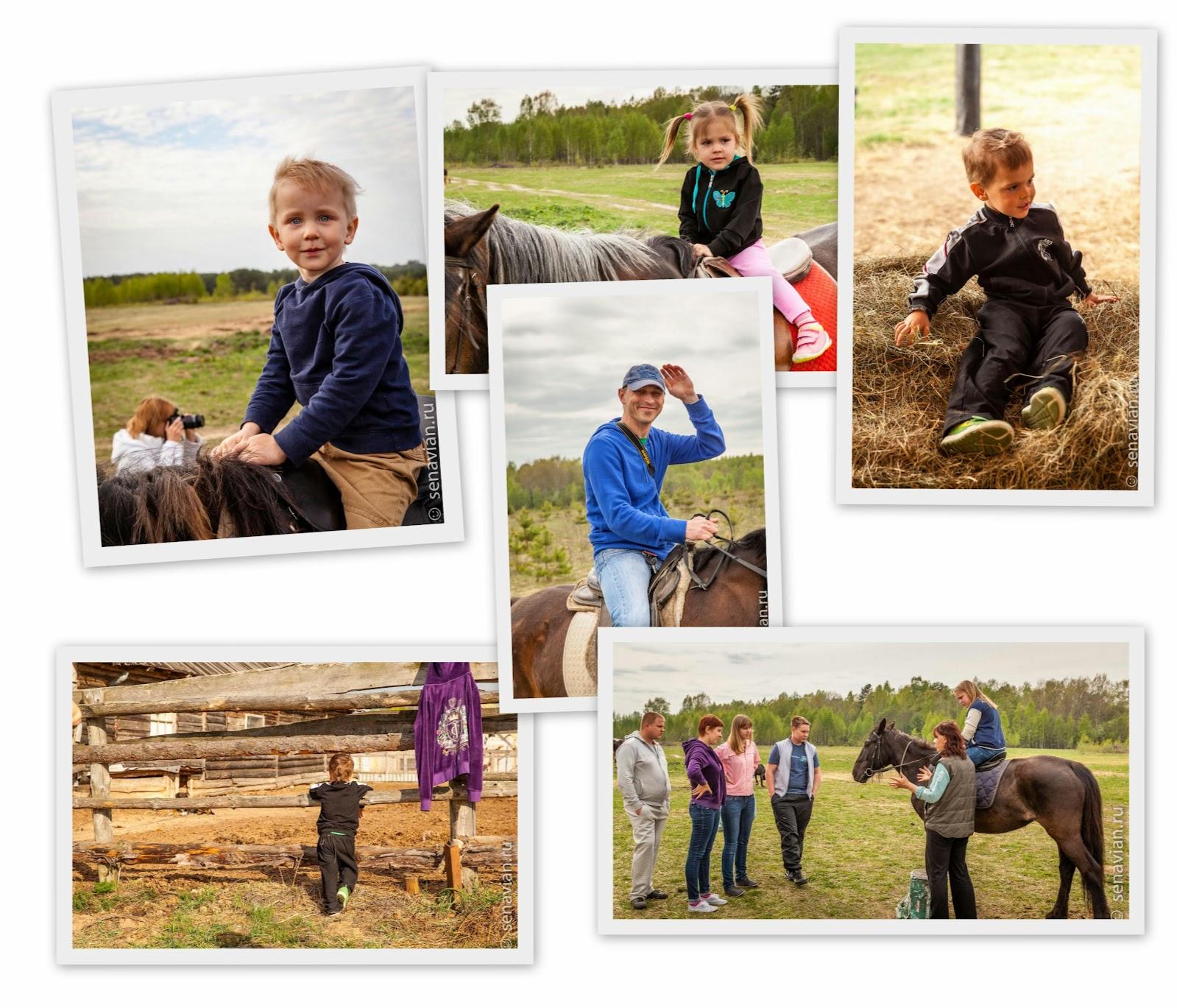 Конные прогулки для детей и родителей в Тверской области