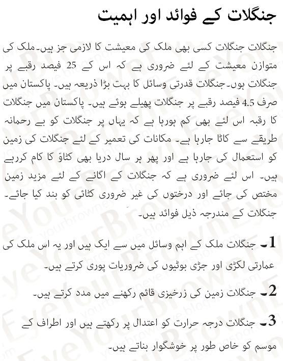 Buying an essay my school in urdu