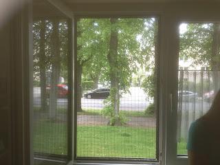 Katzennetz an Fenster anbringen