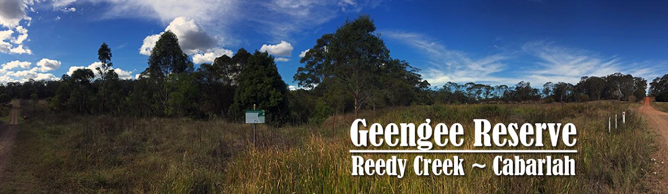 Geengee Reserve Cabarlah