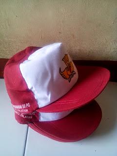 Topi Sekolah Dasar (SD)