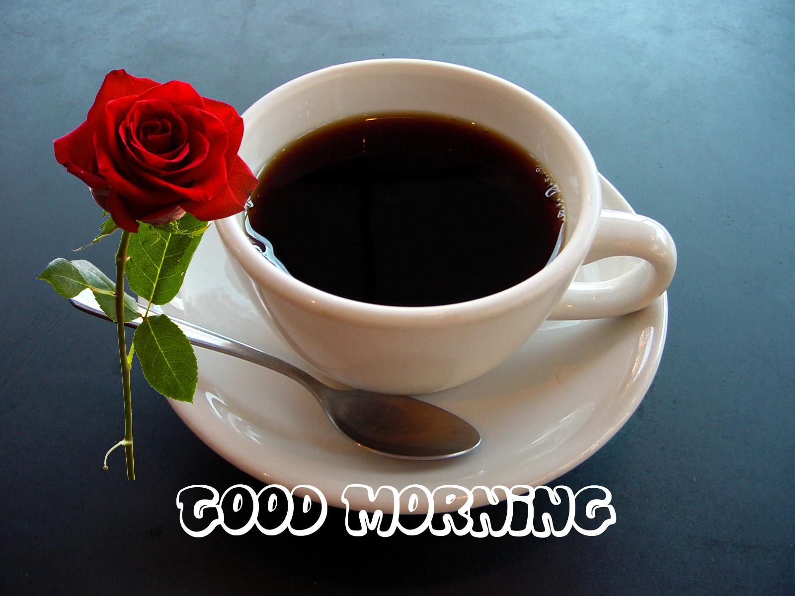 HD Good Morning Wallpaper for Mobile