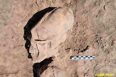 Alien Skull - Sonora, Mexico