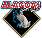 ALAGOAS BETTA SHOW