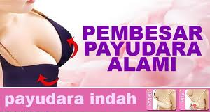 queen ladies super payudara Pil Pembesar Payudara ( Breast Beautifying )