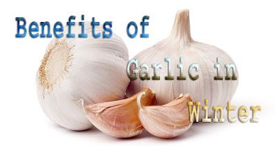 Surprising benefits of garlic in winter benefits of garlic in winter - Surprising uses for garlic ...
