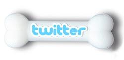 Meu Whippet no Twitter