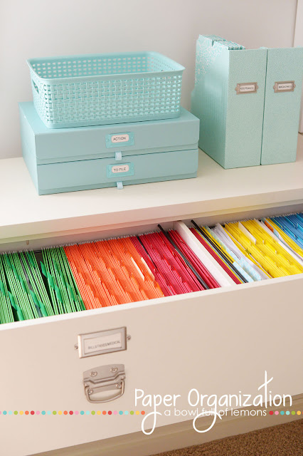 Organized Paper - Featured on Operation Organization by Heidi - Peacthree City Professional Organizer-