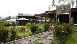 HOTEL JAVA BANANA BROMO,LODGE, CAFE & GALLERY
