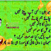 Facebook Jokes in Urdu Latifay 2016