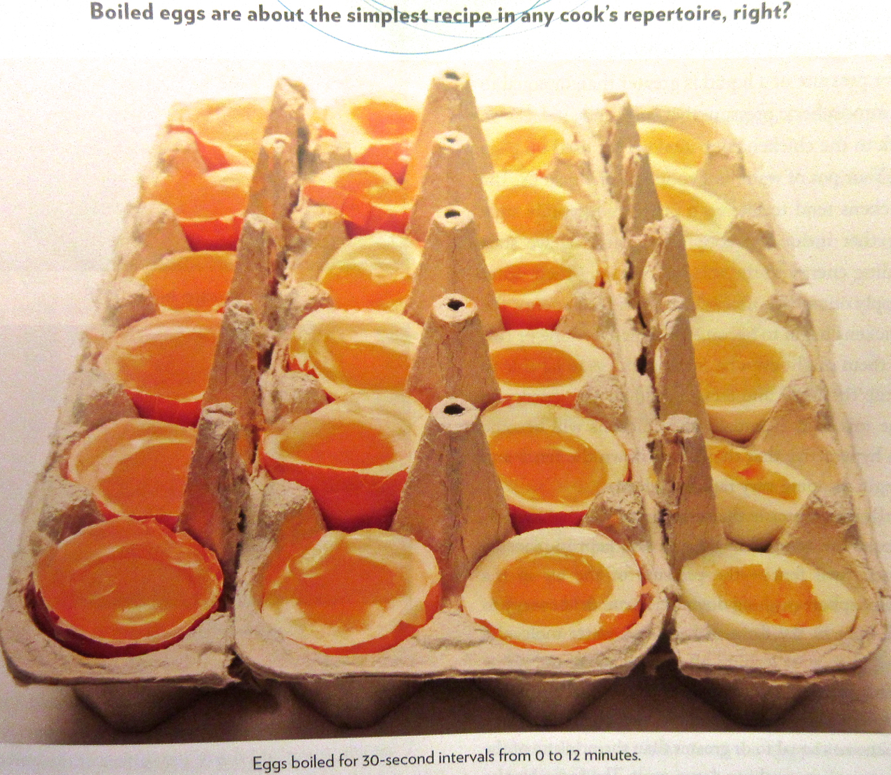 Bobbyjayonfood brilliant new book on the science of cooking the the food labs approach to egg researach forumfinder Choice Image