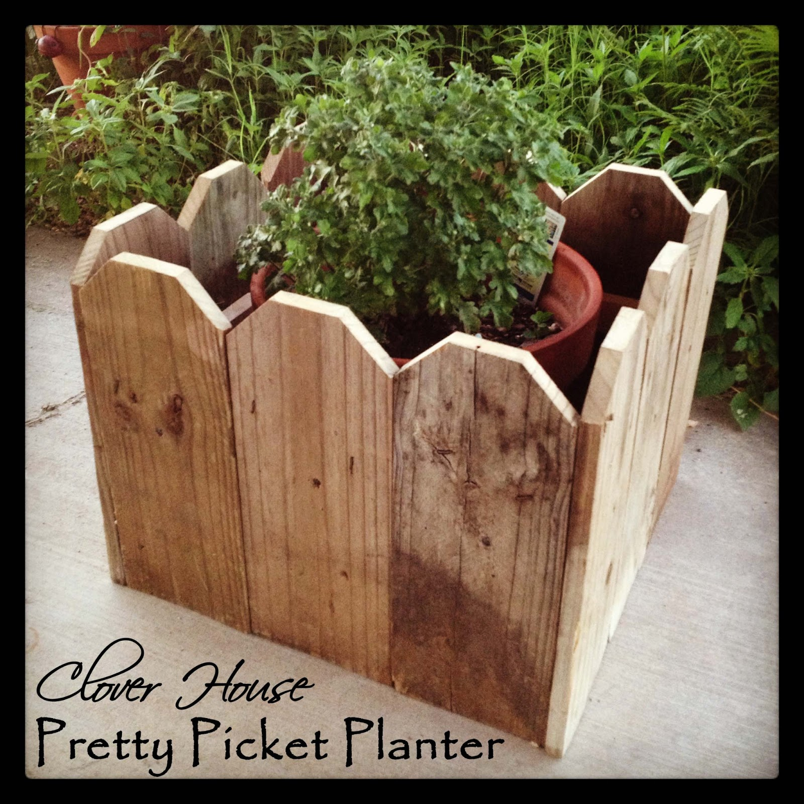 Picket fence planter via clover house