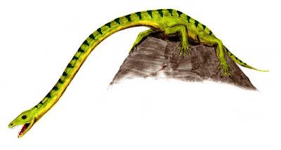 reptiles extraños prehistoricos Tanystropheus