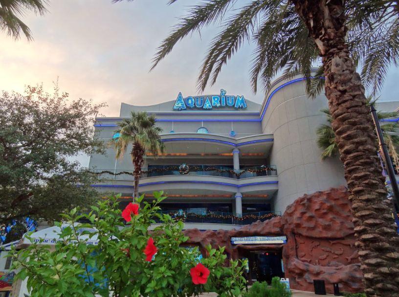 Aquarium restaurant coupons houston