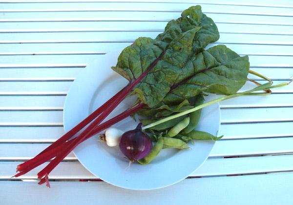Grönsaker på en vit tallrik