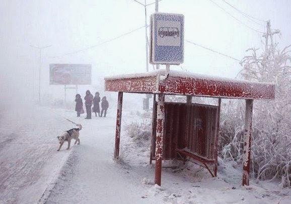 كيف يعيش سكان أبرد مدينة في العالم