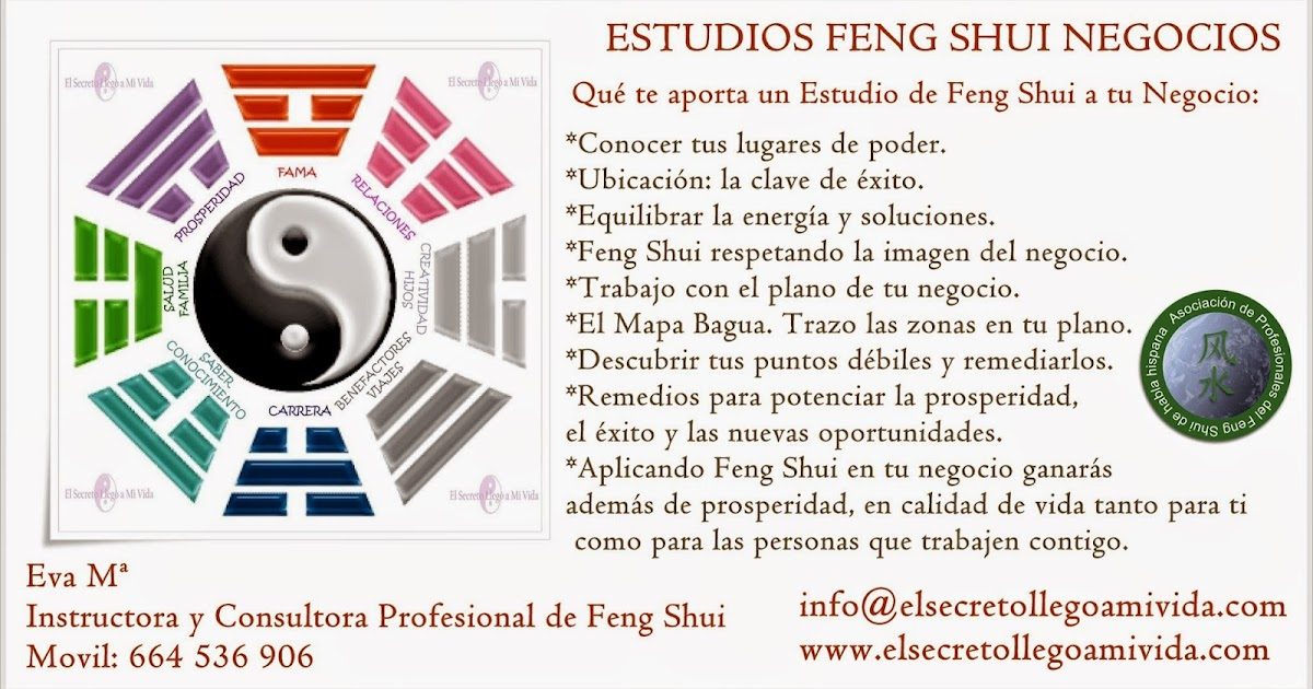 Estudios fengshui negocios for Feng shui decoracion negocio