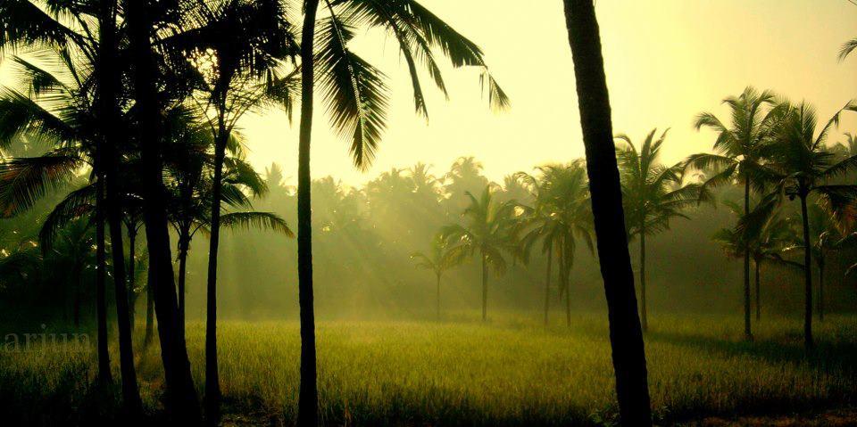 natural beauty of kerala essay in malayalam