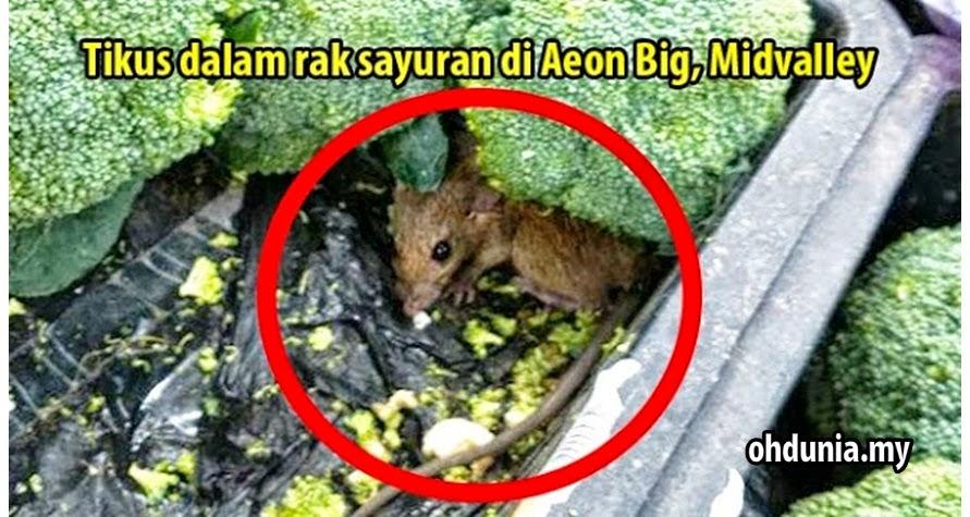 Jijik! Tikus Ditemui Dalam Rak Sayur Di Aeon Big, Midvalley (2 Gambar)