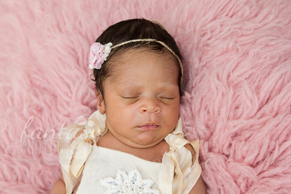 newborn photographers in winston salem | winston-salem baby photographers