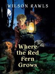 a review of where the red fern grows a book by wilson rawls Where the red fern grows, by wilson rawls is one awesome book in this heart-warming tale, you can read the perspective of a boy who only wanted a dog.