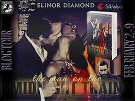 The Man on the Midnight Train by Elinor Diamond