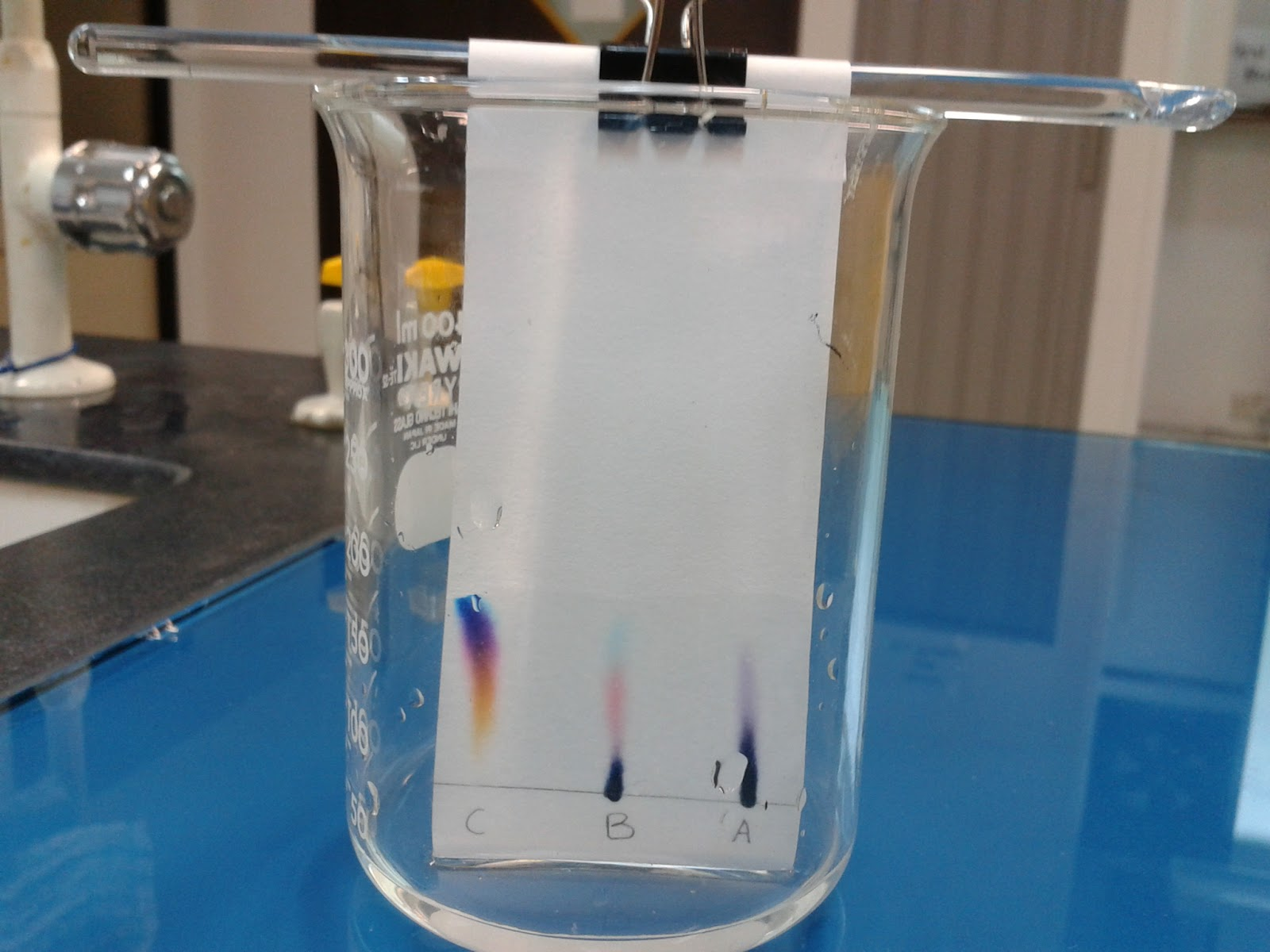 experiment chromotography Paper chromatography lab chromatography is a method for analyzing complex mixtures by separating them into the chemicals from which they are made.