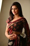 Shamili dazzling photos in saree-thumbnail-18