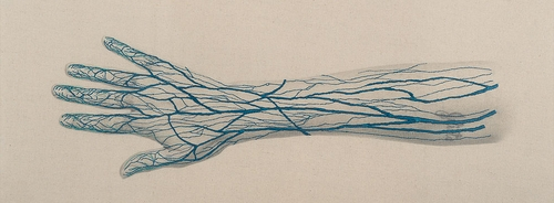 07-The Hand-Juana-Gómez-Embroidered-Anatomy-exposing-Internal-Physiology-www-designstack-co