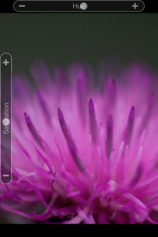 Adobe's Photoshop Express iOS App