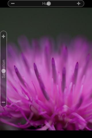 Adobe's Photoshop Express iOS App