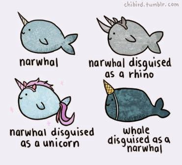 narwhals narwhals have nothing to do with education there is no obvious connection a normal person could draw from the narwhal to the classroom which