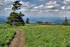 Top 75 Hikes Near Asheville