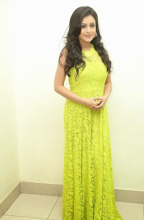 Actress Mishti Chakraborty Picture Gallery in Long Dress at Chinnadana Nee Kosam Audio Launch freshgallery.in13.jpg