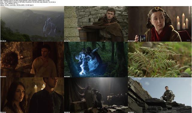 Paladin+Dawn+of+the+Dragonslayer+(2011)+BluRay+1080p