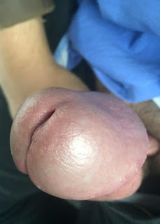 cumshot porn - sexygirl-image_1-740961.jpeg