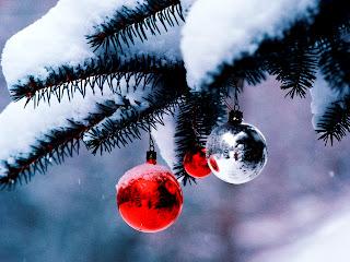 اجمل صور Christmas Tree