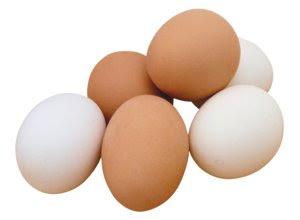 telur-ayam-kampung-negeri.jpg