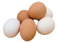 Perbedaan Telur Ayam Kampung dan Telur Ayam Negeri