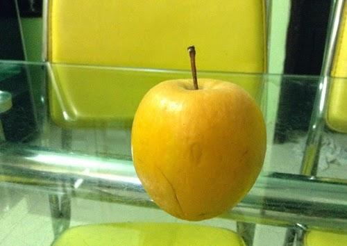 Quả táo của một người dân ở Hà Nội sau 9 tháng chuyển sang màu vàng vàng, hơi héo nhưng vẫn rắn chắc